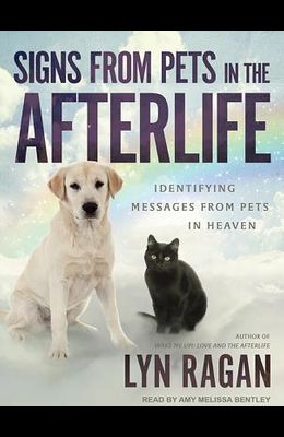 Signs from Pets in the Afterlife
