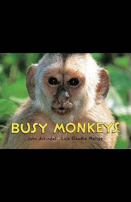 Monkeys!: A Busy Animals Book