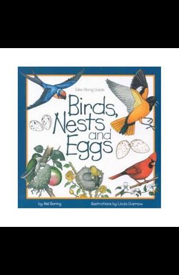 Birds, Nests & Eggs