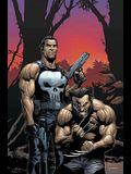 Wolverine/Punisher Volume 1 Tpb