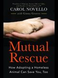 Mutual Rescue: How Adopting a Homeless Animal Can Save You, Too