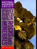 Rocks & Minerals: Rocks & Minerals