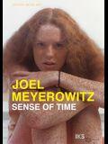 Joel Meyerowitz: Sense of Time: A Film by Ralph Goertz