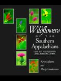 Wildflowers of the Southern Appalachians: How to Photograph and Identify Them