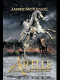 Arelle: Book One of the Legend of Arelle Henne