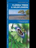 Florida Trees & Wildflowers: A Folding Pocket Guide to Familiar Species
