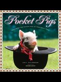 Pocket Pigs Calendar: Featuring the Teacup Pigs of Pennywell Farm