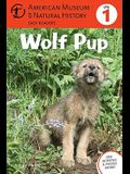 Wolf Pup, 4: (Level 1)