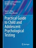 Practical Guide to Child and Adolescent Psychological Testing