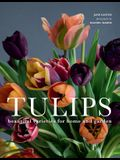 Tulips: Beautiful Varieties for Home and Garden