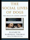 The Social Lives of Dogs: The Grace of Canine Company