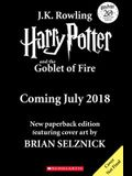 Harry Potter and the Goblet of Fire, Volume 4