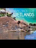 Bringing Back Our Wetlands