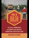Made in Baja: The Lives of Farmworkers and Growers Behind Mexico's Transnational Agricultural Boom