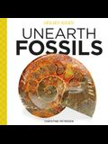 Unearth Fossils