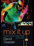 Mix It Up: Popular Culture, Mass Media, and Society (Second Edition)