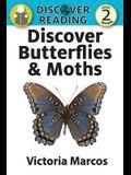 Discover Butterflies & Moths