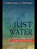 Just Water: Theology, Ethics, and the Global Water Crisis