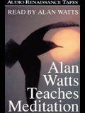 Alan Watts Teaches Meditation