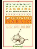 Backyard Farming: Growing Garlic: Expert Advice Made Easy