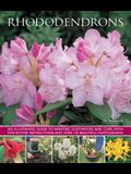 Rhododendrons: An Illustrated Guide to Varieties, Cultivation and Care, with Step-By-Step Instructions and Over 135 Beautiful Photogr