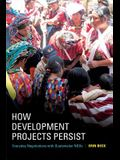 How Development Projects Persist: Everyday Negotiations with Guatemalan NGOs