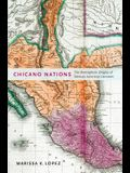 Chicano Nations: The Hemispheric Origins of Mexican American Literature