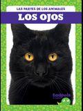 Los Ojos (Eyes)