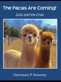 The Pacas Are Coming!: ZuZu and the Crias