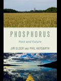 Phosphorus: Past and Future