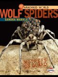 Wolf Spiders: Mothers on Guard