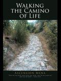Walking the Camino of Life