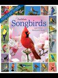 Audubon Songbirds and Other Backyard Birds Picture-A-Day Wall Calendar 2022