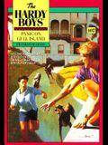Panic on Gull Island (The Hardy Boys, No. 107)