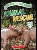 Five-Minute True Stories: Animal Rescue