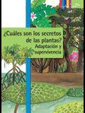 Cuales Son Los Secretos de Las Plantas? Adaptacion Y Supervivencia