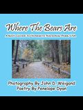 Where the Bears Are---A Kid's Guide to Yosemite National Park, USA