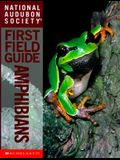 National Audubon Society First Field Guide (National Audubon Society First Field Guides)