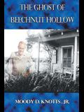 The Ghost of Beechnut Hollow: Book Two of The Miracle of the Mountain Series