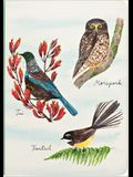 Birder's Amazing A5 Notebook with Dot Grid Pages and Lay Flat Technology