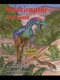 Velociraptor Up Close: Swift Dinosaur