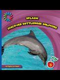 Discover Bottlenose Dolphins