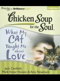 What My Cat Taught Me about Love