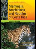Mammals, Amphibians, and Reptiles of Costa Rica: A Field Guide