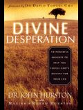 Divine Desperation: 12 Powerful Insights to Help You Fulfill God's Destiny for Your Life
