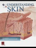 Q&A Understanding Skin