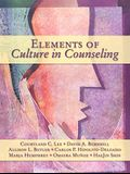 Elements of Culture in Counseling