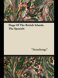 Dogs Of The British Islands. The Spaniels