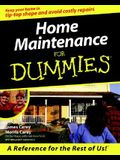 Home Maintenance for Dummies?