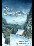 The Beehive Cluster: A novel for all ages